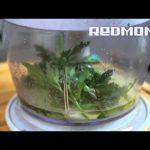 Мультиварка REDMOND 150. Паста салат с кинзой и лаймом. Рецепты для мультиварки #8